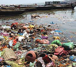 Ganges, Pollution, Clean Ganges, Namami Gange