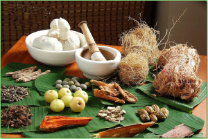 khichdi, blog,current affairs, general,knowledge, ias, ips, civil, services, CSAT,pre, ies, general studies, GS, mains, competitive, entrance, bank, PO, IBPS  NRDC, CCRAS inks MoA to commercialise ayurvedic medicines