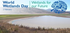 World Wetlands Day,2 February,Wetlands for our future,Ramsar Convention on 2 February 1971,Iranian city of Ramsar,world wetland day 2014,Wetlands and Agriculture,khichdi, blog,current affairs, general,knowledge, ias, ips, civil, services, CSAT,pre, ies, general studies, GS, mains, competitive, entrance, bank, PO, IBPS,