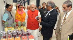 Union Government approves 17 Mega Food Parks for food processing across the country