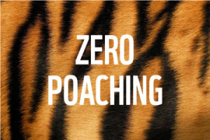 Symposium: Towards Zero Poaching in Asia concludes in Nepal, khichdi, blog,current affairs, general,knowledge, ias, ips, civil, services, CSAT,pre, ies, general studies, GS, mains, competitive, entrance, bank, PO, IBPS