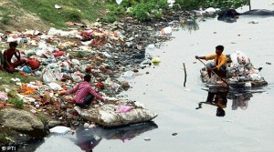 NGT imposes monthly tax on all households in Delhi to clean up Yamuna River
