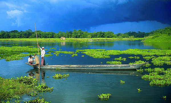 Majuli Biodiversity 15 Places in India to Chill Out this Summer, Summer, Vacations, Coorg, Karnataka,  Islands of Lakshadweep, Majuli Island, Assam, Andamans, Deodar Forest, Himachal Pradesh, Kashmir, Ladakh, Leh, Matheran, Mizoram, Himalaya, Nanda Devi, Nohkalikai Falls, Cherrapunji, Valley of Flowers, Uttarakhand, Stok Range, Ladakh, Hill station, Tourism, Munnar, Tea garden, Yumthang Valley, Sikkim