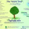 Neem: Best Choice as Herbal Pesticide || Organic Farming