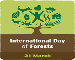 International Day of Forests , 21st March, Forests and  Climate Change