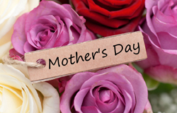 Mother's Day, was created by Anna Jarvis in 1908