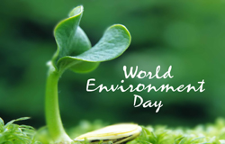 World Environment Day (WED) , WED, United Nations Environment Programme (UNEP)